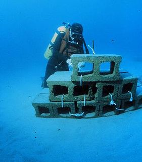 Artificial reef A man-made underwater structure, typically built to promote marine life, control erosion, block ship passage, block the use of [[trawling]] nets, or improve surfing