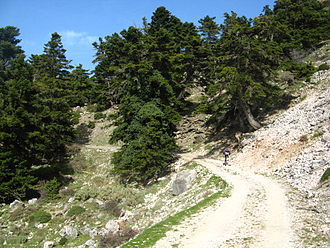 Panachaiko - Image: Ascening path, Panachaiko Mountains, Greece