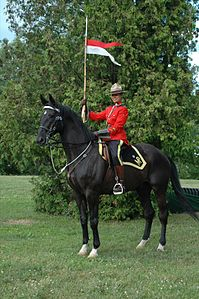 Royal Canadian Mounted Police •Gendarmerie royale du Canada