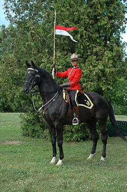 Royal Canadian Mounted Police • Gendarmerie royale du Canada