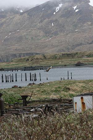 Near Islands - Image: Attu Island, part of the Near Islands