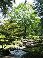 Augsburg Bot Garten Japang Wasserlauf.jpg