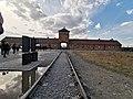 Auschwitz 5.jpg