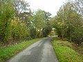 Autumn Colours on the small road - geograph.org.uk - 1571003.jpg