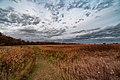 Autumn Hiking Trail at Buffalo River State Park, Minnesota (37829245092).jpg