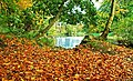 Autumn on the Braid near Ballymena - geograph.org.uk - 1022473.jpg