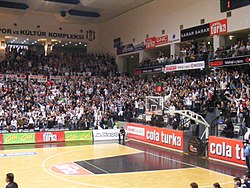 BJK Fans at Cola Turka Arena.JPG