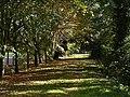 Back footpath - geograph.org.uk - 1535961.jpg