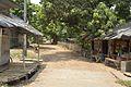 Bakultala Village - Berachampa-Baduria Road - North 24 Parganas 2017-05-10 7841.JPG