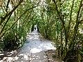Balchik Botanical garden E1.jpg