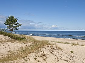 Baltic Sea coast near Miķeļtornis.jpg