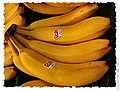 Bananas - Flickr - pinemikey.jpg