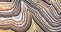 Bands, Crazy Lace Agate - Macro Panorama (cropped).jpg