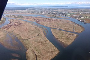 Ladner, British Columbia - An east-facing aerial view of Ladner beyond Barber Island, Duck Island, Gunn Island and Port Guichon in the Fraser River Estuary
