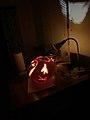 Barn Owl Jack O Lantern Left Side.jpg