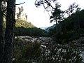 Barranc de la Vall P1070586.JPG