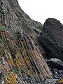 Basalt columns , Kincraig Cliff - geograph.org.uk - 1006305.jpg