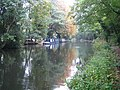 Basingstoke Canal near Frimley Green - geograph.org.uk - 574067.jpg