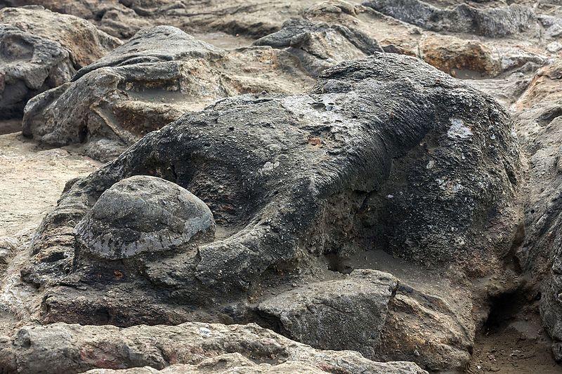 Berkas:Batu Malin Kundang, Air Manis Beach, Padang 2017-02-14 02.jpg