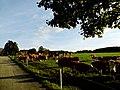 Bauernhof - panoramio (15).jpg