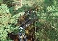 Baumwipfelpfad bei Fischbach bei Dahn - panoramio.jpg