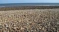 Beach, Castle Point - geograph.org.uk - 996723.jpg