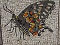 Belgrade zoo mosaic0051.JPG