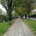 Belvedere, pista ciclabile.jpg
