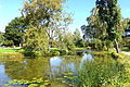 Bergianska trädgården - Stockholm, Sweden - DSC00119.JPG
