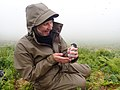 Bio Tech Sarah holds a least auklet by Laney White USFWS.jpg