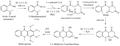 Biosíntesis de melicopicina.png