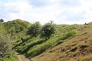 English: Black Hill from the North Taken from ...