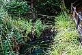 Black Hound Weir, Nuthurst paranormal site, West Sussex 1.jpg