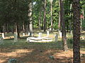 Blackwood Cemetery (222326497).jpg
