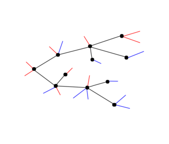 Blossom tree (graph theory) - A blossom tree (opening stems are in red, closing stems in blue)