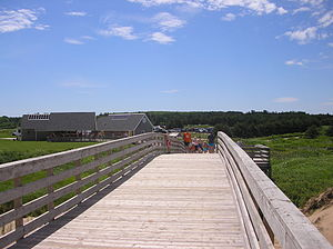 Cavendish Beach - Image: Boardwalk