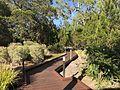 Boardwalk in Noosa North Shore Resort, Queensland.jpg