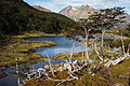 Bobří kaskády, Tierra del Fuego, Argentina 03.jpg
