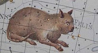 Felis (constellation) - Felis
