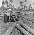 Bosbewerking, arbeiders, boomstammen, machines, Bestanddeelnr 251-8149.jpg