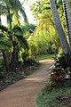 Botanical Gardens Kauai, Hawaii - panoramio (5).jpg