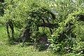 Botanical garden – spring 9160.jpg