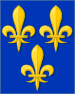 Bourbonic banners - France.svg