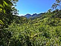 Brasil Rural - panoramio (40).jpg