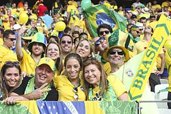 And Beautiful soccer fan brazil pity, that
