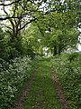 Bridleway at Heathfield Farm - geograph.org.uk - 437627.jpg