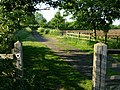 Bridleway near Patford Bridge - geograph.org.uk - 183288.jpg