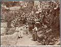 Brogi, Carlo (1850-1925) - n. 10356 - Contorni di Napoli - Positano, fichi d'India.jpg