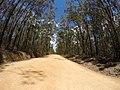 Brooman NSW 2538, Australia - panoramio (117).jpg