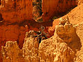 Bryce Canyon National Park 4889403565.jpg
